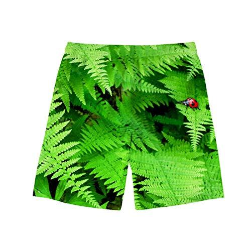 Swtshorts Frische - Costume da Bagno a Pantaloncino, da Uomo, Motivo Coccinella, con Cordoncino, Colore: Verde Cc30 XXXL