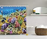 Juzijiang Ocean Decor Collection, Undersea Scene at Water Around Atoll with Colorful Sponge Coral Reefs Tropical Fishes Jellyfish Picture, Polyester Fabric Shower Curtain, 75