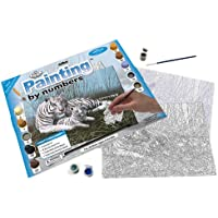 Junior Paint By Number Kit 15-1/4