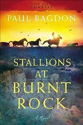 Stallions at Burnt Rock (West Texas Sunrise Book #1): A Novel