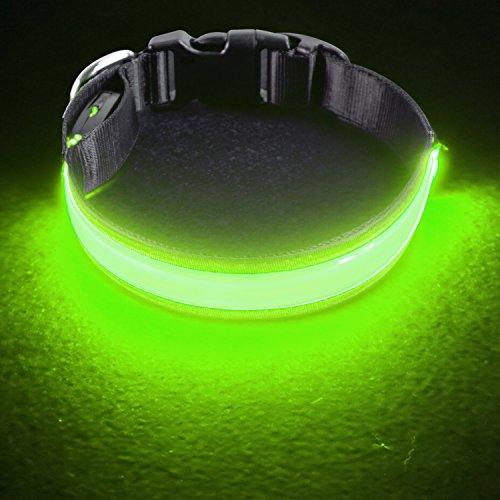 PetIsay LED Collar para Perros, Super Brillante con luz LED Recargable por USB, Collar de Perro Iluminado para Seguridad Nocturna, Resistente al Agua, tamaños Ajustables(Verde Neón,M(40-50cm))