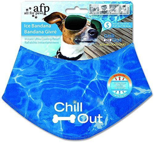 All for Paws Chill Out Ice Bandana, Small by All for Paws