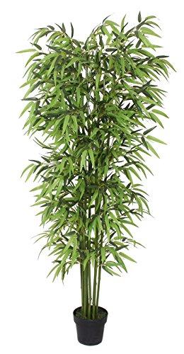 PASAMO 07146 Bambus, Echtholzstamm, Kunstpflanze 195cm