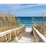 murando - 200x140 cm XXL-Wandbild auf Vliesleinwand! Großformat Poster Wanddekoration - Fototapete - Tapete - Bild - Bilder - Landschaft Natur Meer Strand c-C-0013-a-a
