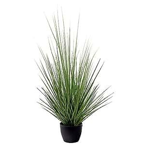 Ligne Déco 441201WO Plante Artificielle Herbe Graminée en Pot 70 cm