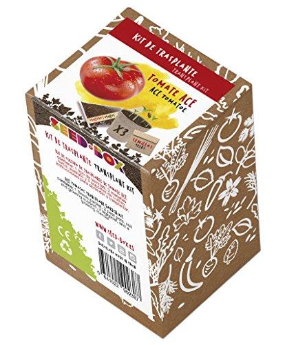 SeedBox KTVHTA Huerto Urbano kit trasplante tomate
