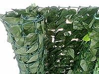 HAIE DE LAURIER beaucoup plus résistante que la brande - Joli rendu vert toute l'année, comme une vraie haie - Brise vue du type « feuillage », « le laurier naturel »