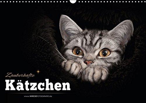 Zauberhafte Kätzchen (Wandkalender 2016 DIN A3 quer): Kalender Zauberhafte Kätzchen (Monatskalender, 14 Seiten)