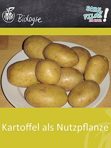 Kartoffel als Nutzpflanze - Schulfilm Biologie Internationalen Kartoffel