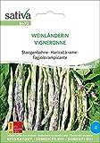 Stangenbohne Weinländerin | Bio-Bohnensamen