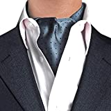 STTLZMC Herren Krawattenschal Ascotkrawatte Schal Fashion Gentleman Cravat Ties,color 9,One Size