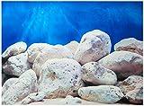 Rückwandfolie 180cm x 60 cm Rückwandposter für Aquarien