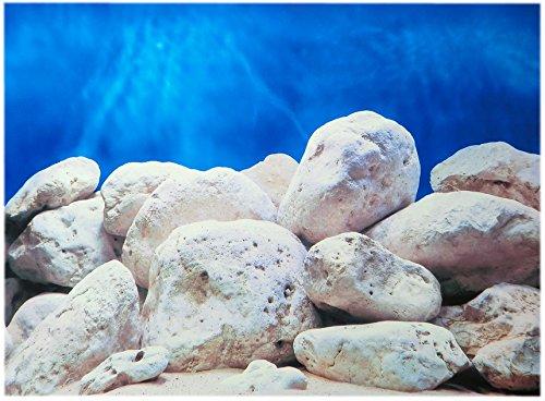 Rückwandfolie 100cm x 60 cm Rückwandposter für Aquarien