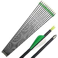 12Pcs 31 pouces Tir à l'arc Flèches de Carbone Spine 600 (carbone pur)