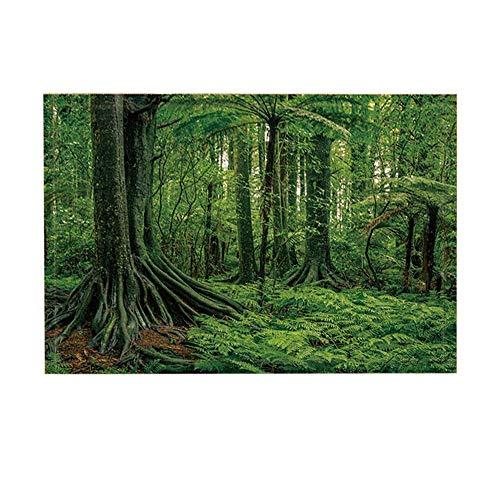 EdCott Tropischer Regenwald Pflanzen Dekor Palm Blätter exotischen Baum im Dschungel Bad Teppiche rutschfeste Fußmatte Boden Eingänge Indoor Haustür Matte Kinder Badematte 15.7x23.6in grün