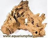 Mühlan Pflanzenhandel 1 Mooreichenwurzel 20-30 cm Wurzel, Aquarium, Moor