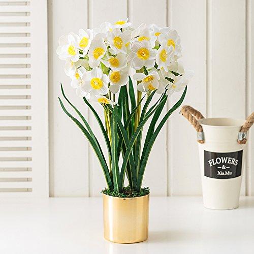Fleurs De Pu Bijoux Emballés Swing Repas Dans L'Émulation De Table Pot De Fleurs Séchées Narcisses Meubles De Salon Table Basse Meubles, Narcisse Blanc + Bassin