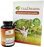 Kurkuma Bio Kapseln VitaDreams - Bio Curcuma Monatsvorrat hochdosiert & Vegan - 620 mg pro Kapsel mit Curcumin und Bio