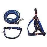 Artistic9 Verstellbare Führleine Hunde Leine Set, Strong Nylon Denim Seil Hund Leine und Halsband für kleine/mittelgroße Hunde–3Pack