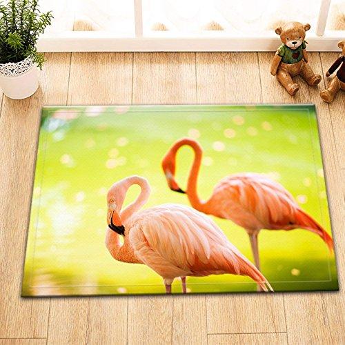 HXY der Rosa karibische Flamingo Geht auf Wasser. Rosa Flamingo Geht auf Einen Sumpf. Flamingos, Hintergrund, Waschbare Badematte Türmatte Wohnaccessoire 60 X 40 cm