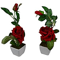 Thefancymart Set Of 2 Piece Artifical Rose Plants With Pots Style code -7