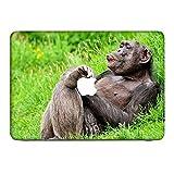 Affen 10008, Schimpanse, Skin-Aufkleber Folie Sticker Laptop Vinyl Designfolie Decal mit Ledernachbildung Laminat und Farbig Design für Apple MacBook Pro Retina 13