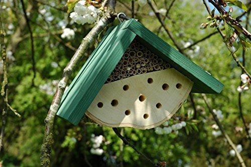 Eine Biene beim Bauen