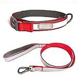 HMMDD Hundehalsband Heimtierbedarf Reflektierende Ganzhals-Halsbandzugset