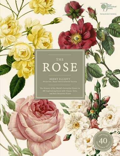 The Rose: The History of the World's Favourite Flower in 40 Roses (Rhs) - Botanische Rosen