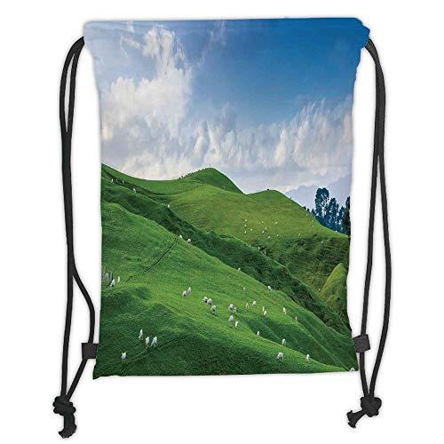 GONIESA Drawstring Sack Backpacks Bags,Farm House Decor,Sheep Under Blue Sky Trees Grassland Highland Nature Landscape Scenery Picture,Green White Soft Satin,5 Liter Capacity,Adjustable String