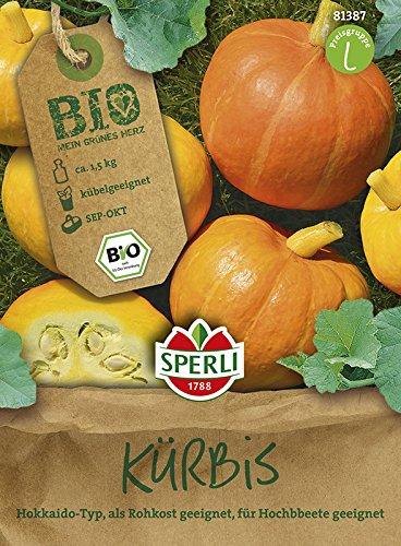 Kürbissamen - Bio-Kürbis Amoro von Sperli-Samen