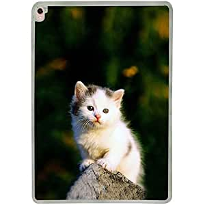 Casotec Sweet Cat Design 2D Printed Hard Back Case Cover for Apple iPad Pro 9.7