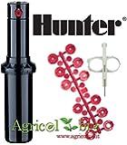 Hunter Irrigatore a Scomparsa / Spruzzatore Erba PGJ -04, 10 cm Alzata - Irrigazione Professionale