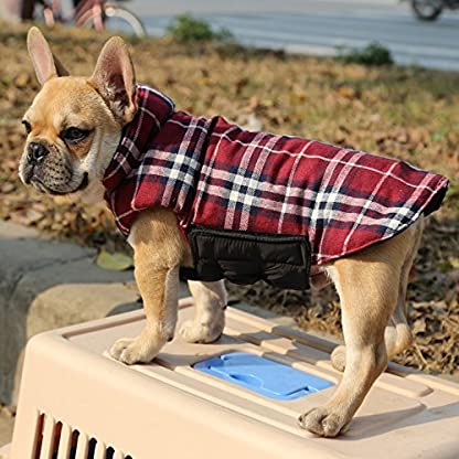 Akemiao Reversible Cozy Dog Jacket Small Medium Breed Windproof Warm Coat for Autumn Winter (Red-XS) 3