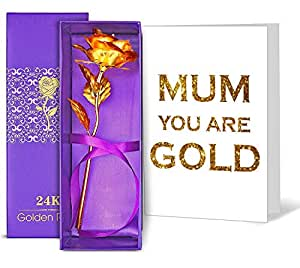 TIED RIBBONS 24K Gold Plated Rose with Mother's Day Special Greeting Card(Red, 9x25cm)