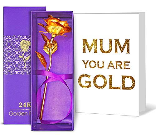 TIED RIBBONS Birthday Gifts for Mother 24K Gold Plated Rose with Greeting Card (9 cm x 9 cm x 25 cm, Red)
