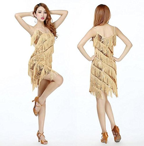 FGDJTYYJ Latin Dance Kleid Kostüm Erwachsenen Kleid Pailletten Quaste Tanz Rock Kostüm Sommerkleid, - Latin Tänzer Für Erwachsenen Kostüm