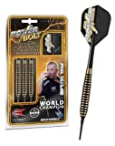 Target Phil Taylor Power Bolt Softdarts