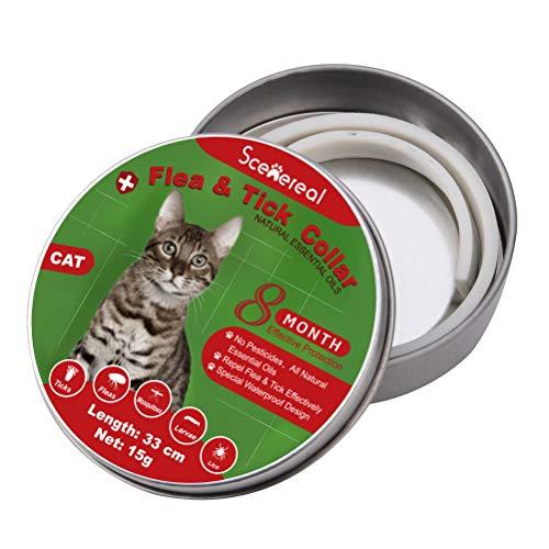 SCENEREAL Katzenhalsband gegen Flöhe und Zecken, 8 Monate, verstellbar, für Kätzchen, Katzen, Welpen, kleine Haustiere