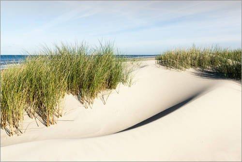 Alu Dibond 180 x 120 cm: Prachtvolle Dünen auf Borkum von Reiner Würz RWFotoArt