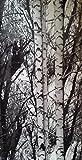 d-c-fix, Folie, Design Wood, Rolle 67,5 x 200 cm, selbstklebend