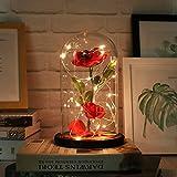Cooljun Rote Seide Rose und LED-Licht mit gefallenen Blütenblättern in Einer Glaskuppel auf Einer hölzernen Basis Geschenk zum Valentinstag Jubiläum Geburtstag Hochzeit LED Lichterkette (Rot)