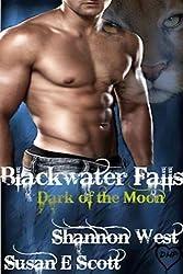Blackwater Falls: Dark of the Moon