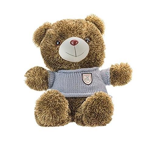 KOBERT GOODS HD Mini-Kamera TEDDYBÄR Überwachsungs Kamera eingebaut in ein Auges eines Teddybären zur flexiblen Aufnahme von Bildern Videos mit Ton, 2,1 MP und 32GB Interner Speicher auslesen per USB