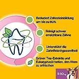 Pedigree DentaStix Fresh Hundesnack für kleine Hunde (5-10kg), Zahnpflege-Snack mit Eukalyptusöl und Grüner Tee-Extrakt, 4 Packungen je 28 Stück (4 x 440 g) - 4