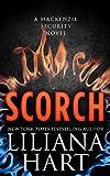 Scorch (MacKenzie Security Book 7)