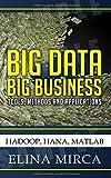 Big Data - Big Business: Tools, Methods and Applications - Hadoop, HANA, MATLAB by Mirca, Elina (2015) Paperback