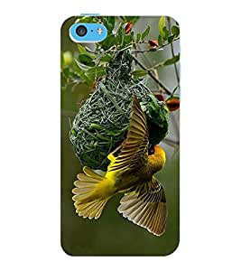 ColourCraft Busy Bird Design Back Case Cover for APPLE IPHONE 5C