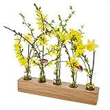 Rasch Design Blumenvase aus Holz und Reagenzglas als Vase | Massivholz Buche, Eiche, Kirsche oder Nussbaum (Eiche)