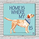 """Nutcase Framed Wall Art Decor Hanging Block Non-Fading Digital Painting For Living Room, Bedroom,Desk & Office - 9""""x9""""(Screws Included) - Home Is Where My Dog Is"""